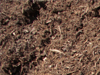 Double Ground Hardwood Mulch